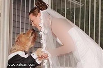 Foto Wanita Menikahi Anjing