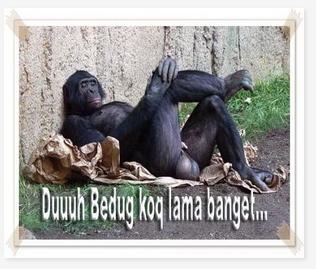 Gambar Gokil Puasa