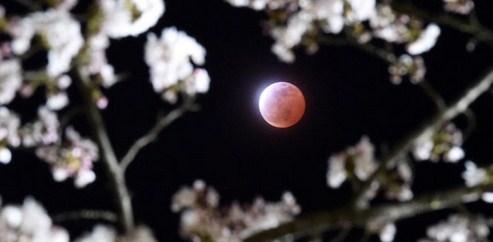 Gerhana Bulan Merah Jepang