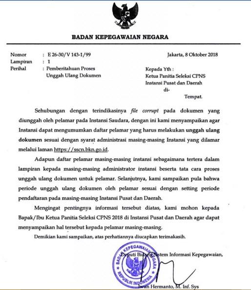 cek ulang pendaftaran CPNS