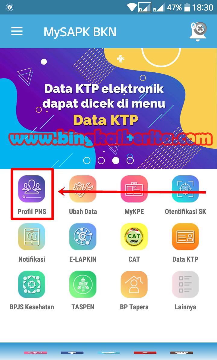 http apps.bkn.go.idprofil pns