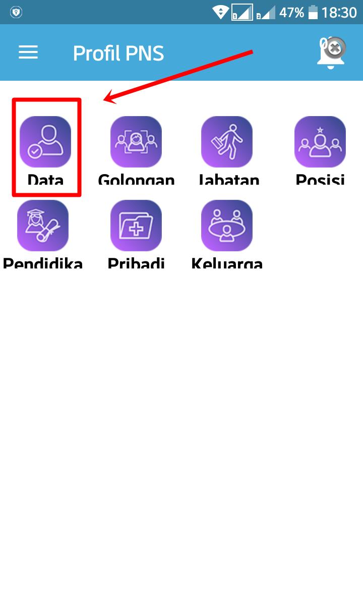 Bkn Profil PNS