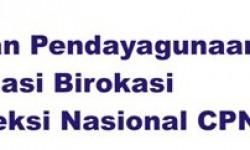 Tata Cara Pendaftaran CPNS Terbaru 2014 Secara Online