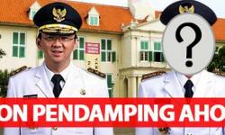 Siapakah Wagub ( Wakil Gubernur) DKI Calon Pendamping Ahok?